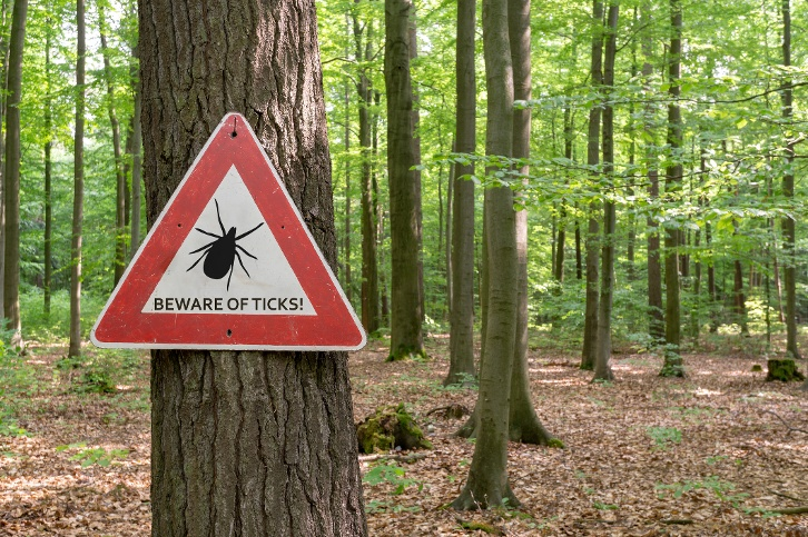 How Do You Know If You Have Lyme Disease? Here are the Signs to Watch Out for this Spring